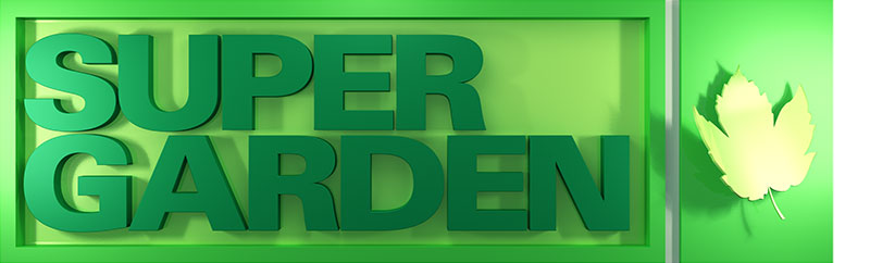 Supergarden springs back!!!